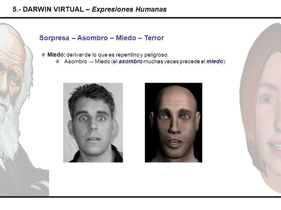 5.- DARWIN VIRTUAL – Expresiones Humanas Sorpresa – Asombro – Miedo – Terror Miedo: derivar de lo que es repentino y peligroso. Asombro Miedo (el asom