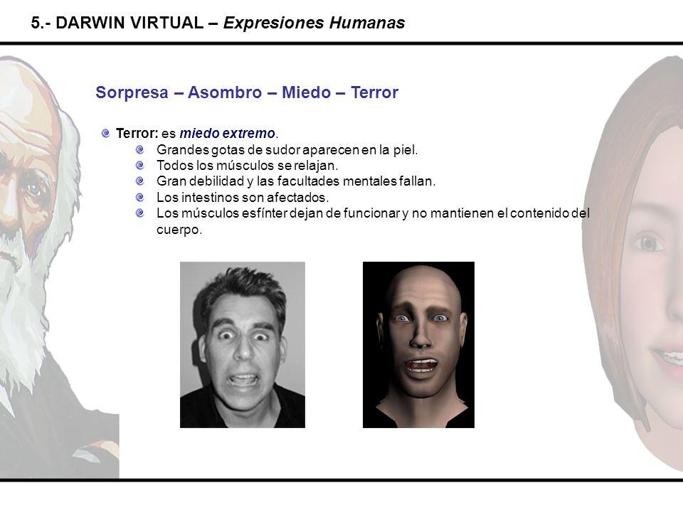 5.- DARWIN VIRTUAL – Expresiones Humanas Sorpresa – Asombro – Miedo – Terror Terror: es miedo extremo. Grandes gotas de sudor aparecen en la piel. Tod