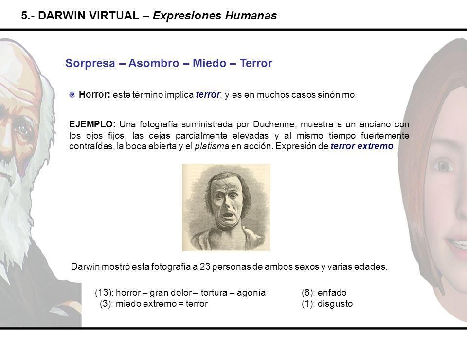 5.- DARWIN VIRTUAL – Expresiones Humanas Sorpresa – Asombro – Miedo – Terror Horror: este término implica terror, y es en muchos casos sinónimo. EJEMP