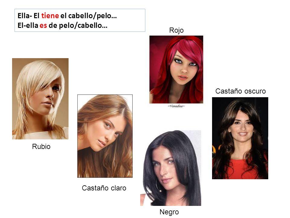 Ella- El tiene el cabello/pelo… El-ella es de pelo/cabello… Negro Rojo Rubio Castaño claro Castaño oscuro