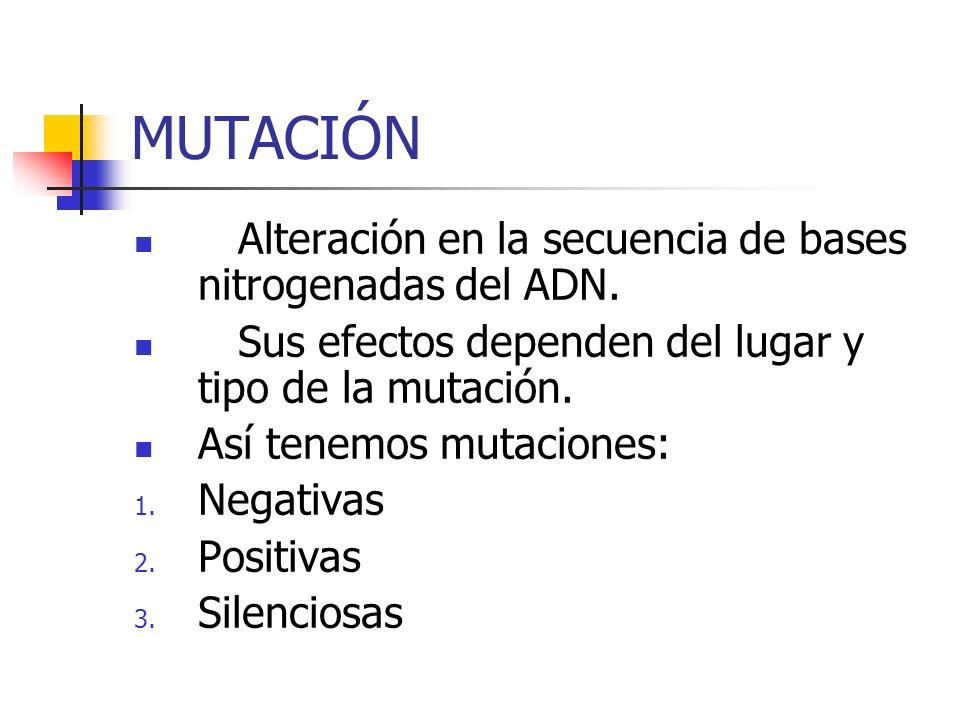 MUTACIÓN Alteración en la secuencia de bases nitrogenadas del ADN. Sus efectos dependen del lugar y tipo de la mutación. Así tenemos mutaciones: 1. Ne