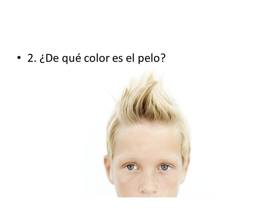 2. ¿De qué color es el pelo?