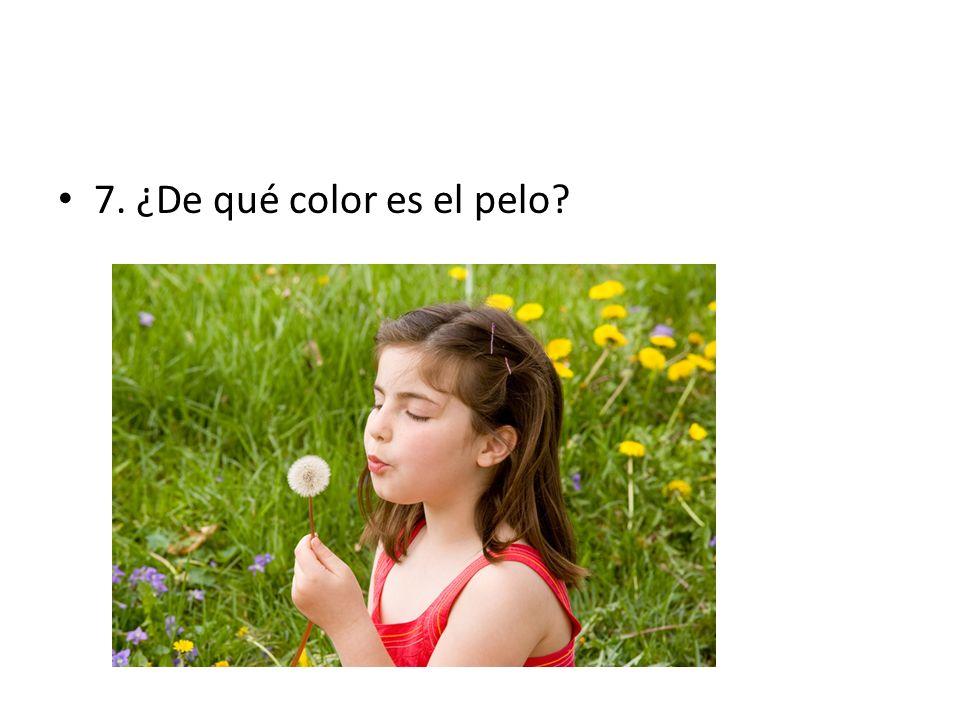7. ¿De qué color es el pelo?