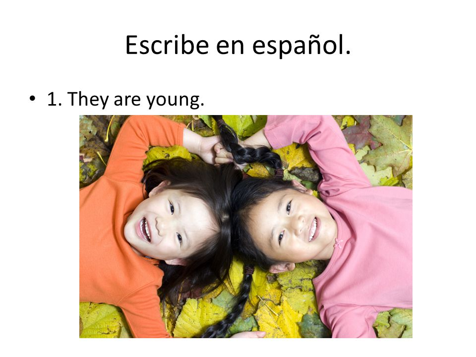 Escribe en español. 1. They are young.