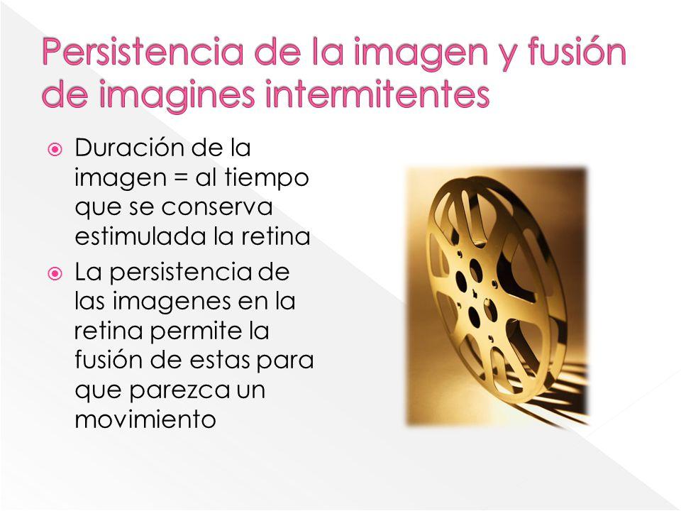 Duración de la imagen = al tiempo que se conserva estimulada la retina La persistencia de las imagenes en la retina permite la fusión de estas para qu