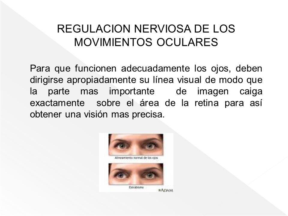 REGULACION NERVIOSA DE LOS MOVIMIENTOS OCULARES Para que funcionen adecuadamente los ojos, deben dirigirse apropiadamente su línea visual de modo que
