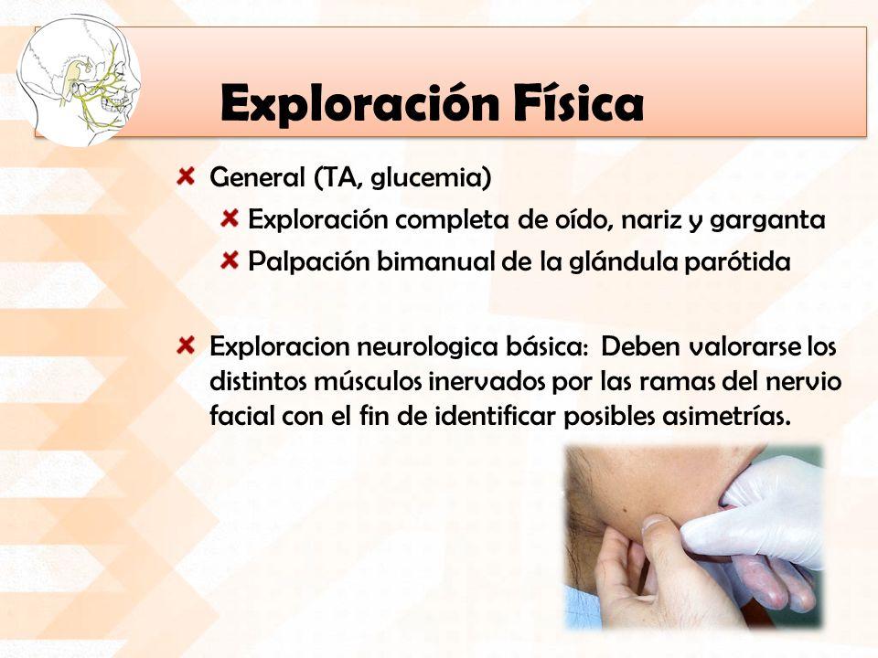 Exploración Física General (TA, glucemia) Exploración completa de oído, nariz y garganta Palpación bimanual de la glándula parótida Exploracion neurol