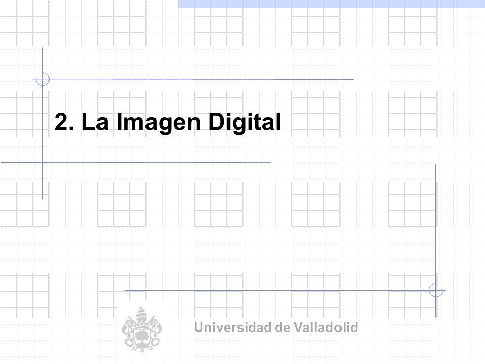 Visión Artificial Industrial.Univ. Valladolid Digitalización: 256 niveles de gris 4.