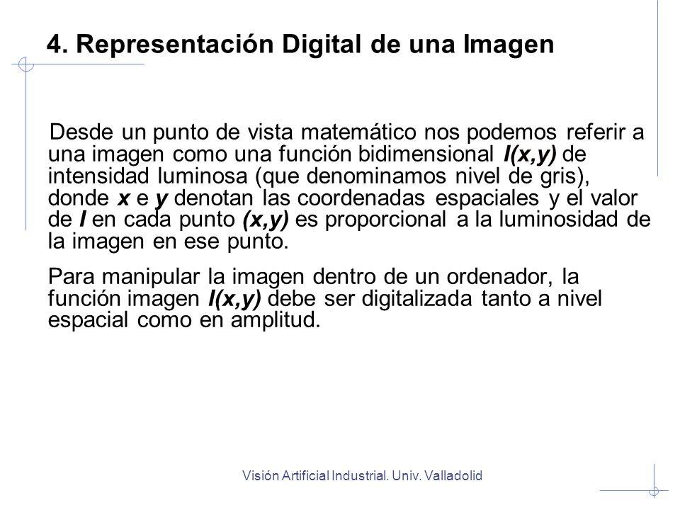 Visión Artificial Industrial. Univ. Valladolid 4. Representación Digital de una Imagen Desde un punto de vista matemático nos podemos referir a una im