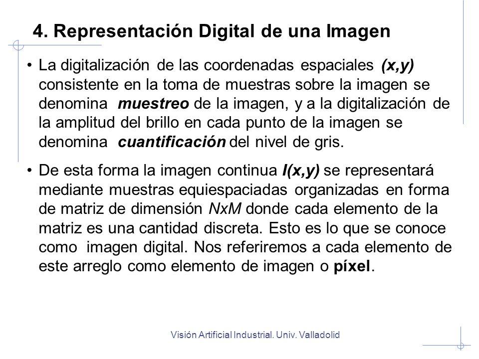Visión Artificial Industrial. Univ. Valladolid 4. Representación Digital de una Imagen La digitalización de las coordenadas espaciales (x,y) consisten