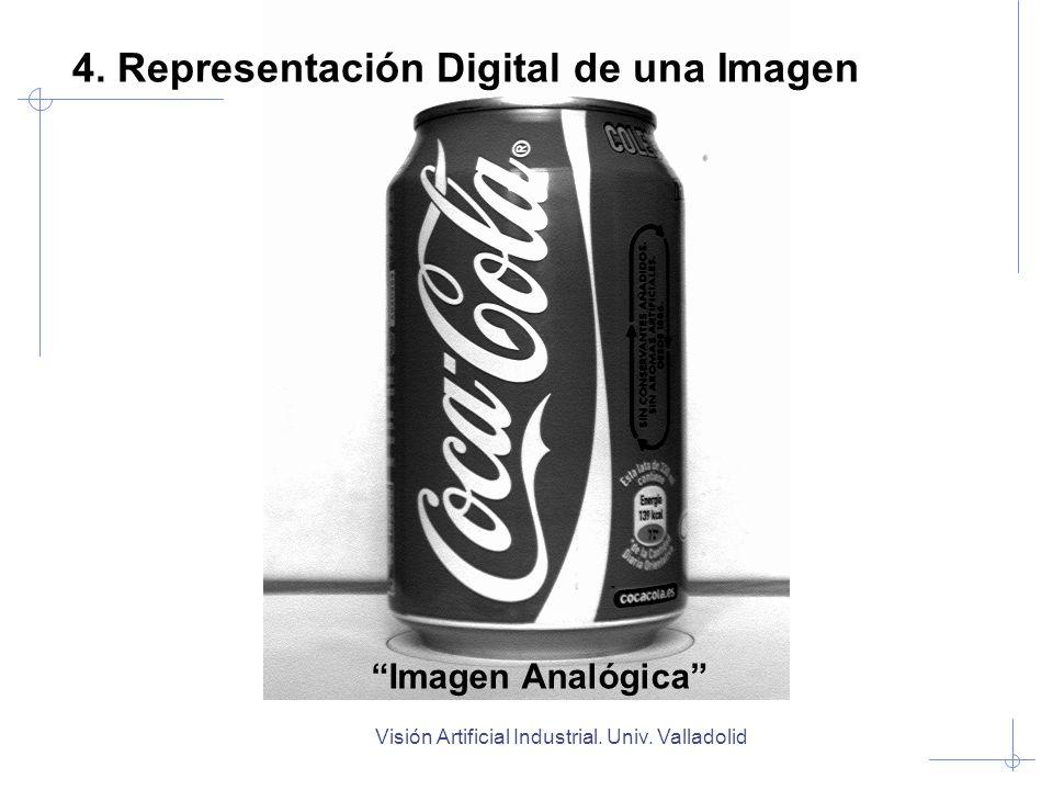 Visión Artificial Industrial. Univ. Valladolid Imagen Analógica 4. Representación Digital de una Imagen