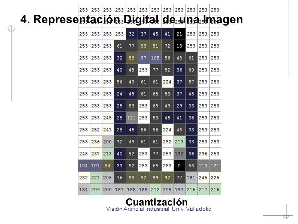 Visión Artificial Industrial. Univ. Valladolid Cuantización 4. Representación Digital de una Imagen