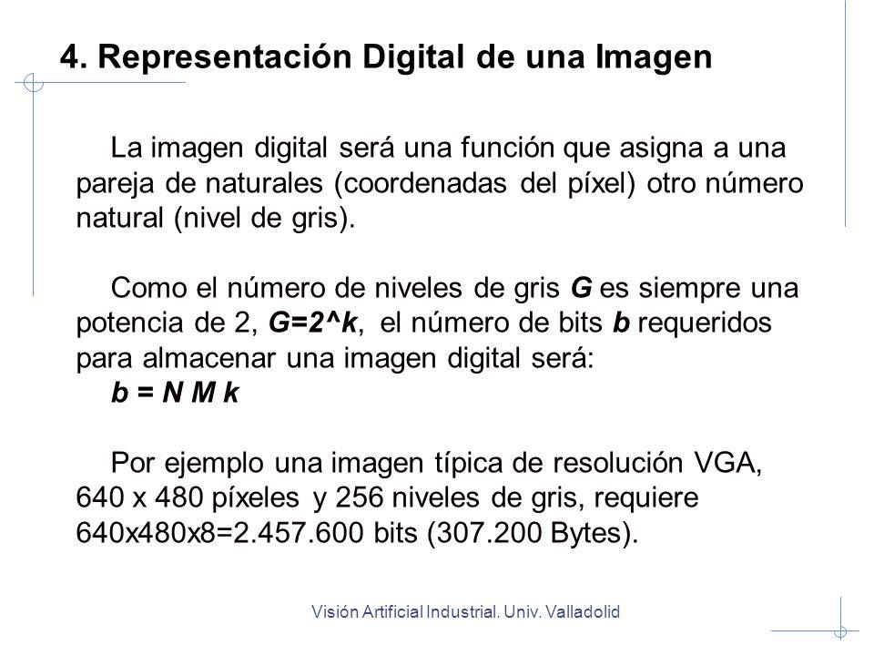 Visión Artificial Industrial. Univ. Valladolid 4. Representación Digital de una Imagen La imagen digital será una función que asigna a una pareja de n