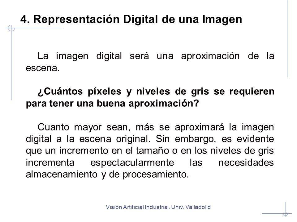 Visión Artificial Industrial. Univ. Valladolid 4. Representación Digital de una Imagen La imagen digital será una aproximación de la escena. ¿Cuántos