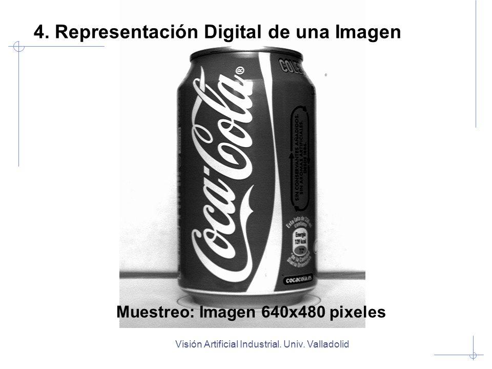 Visión Artificial Industrial. Univ. Valladolid Muestreo: Imagen 640x480 pixeles 4. Representación Digital de una Imagen