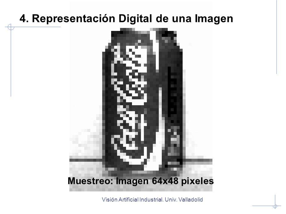 Visión Artificial Industrial. Univ. Valladolid Muestreo: Imagen 64x48 pixeles 4. Representación Digital de una Imagen
