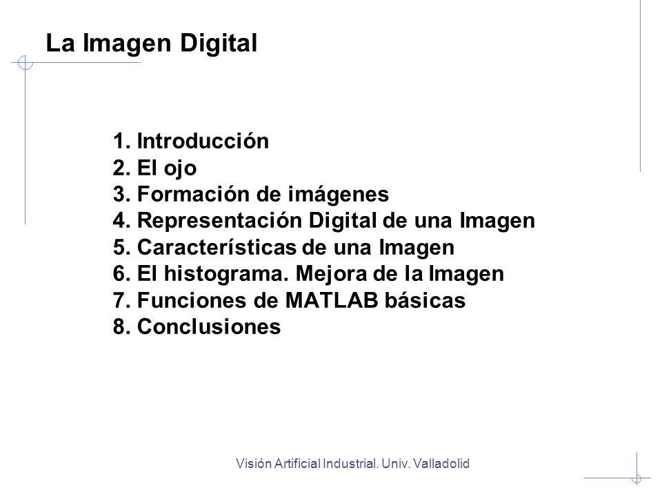 Visión Artificial Industrial. Univ. Valladolid 1. Introducción 2. El ojo 3. Formación de imágenes 4. Representación Digital de una Imagen 5. Caracterí