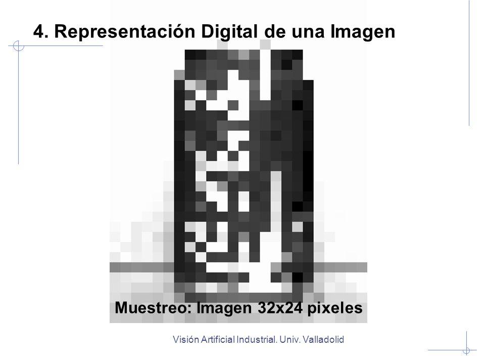 Visión Artificial Industrial. Univ. Valladolid Muestreo: Imagen 32x24 pixeles 4. Representación Digital de una Imagen