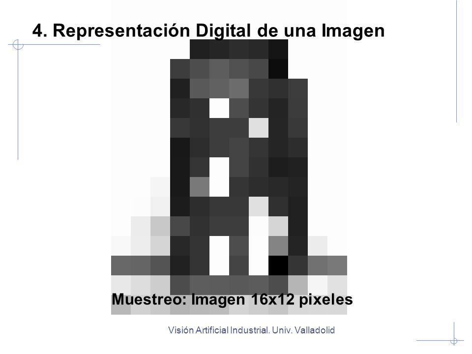 Visión Artificial Industrial. Univ. Valladolid Muestreo: Imagen 16x12 pixeles 4. Representación Digital de una Imagen