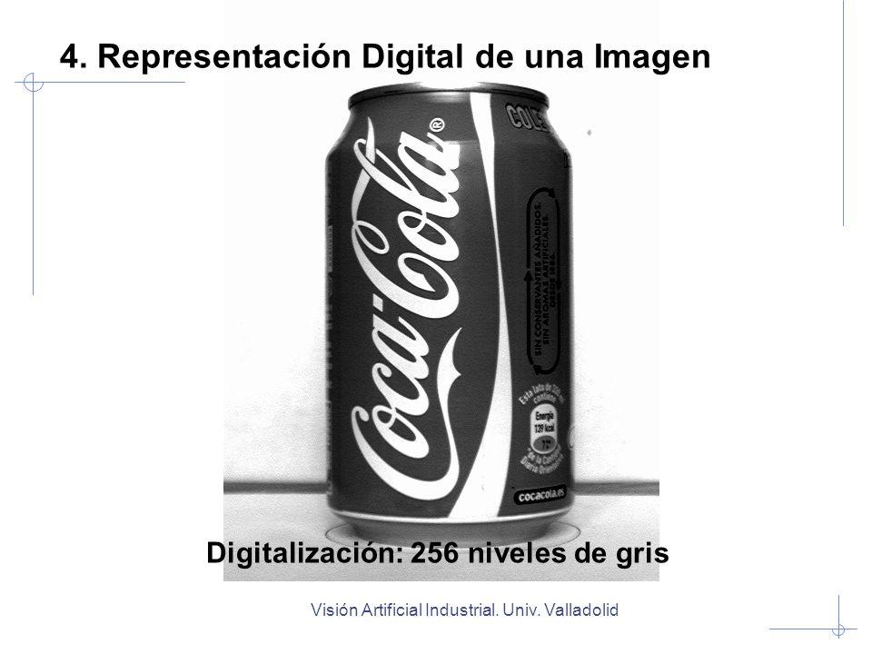 Visión Artificial Industrial. Univ. Valladolid Digitalización: 256 niveles de gris 4. Representación Digital de una Imagen