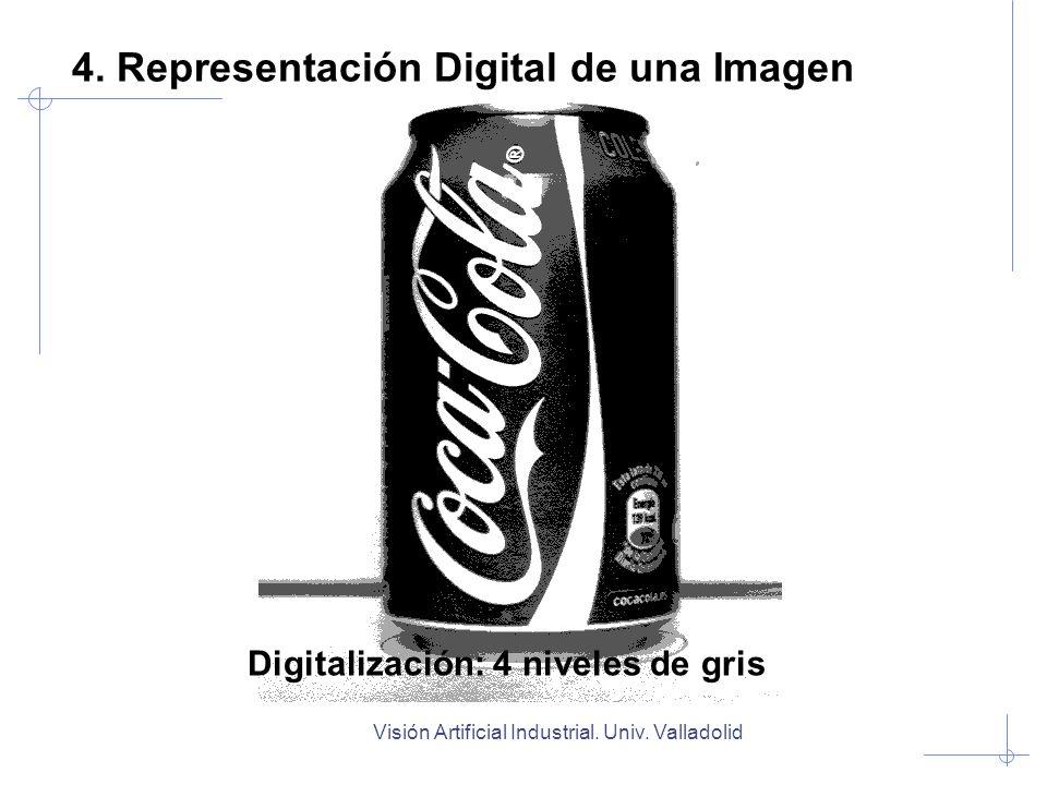 Visión Artificial Industrial. Univ. Valladolid Digitalización: 4 niveles de gris 4. Representación Digital de una Imagen