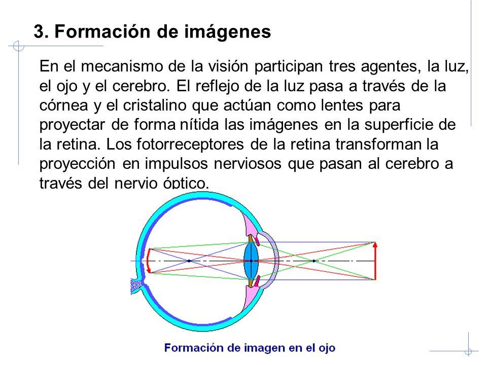 Visión Artificial Industrial. Univ. Valladolid 3. Formación de imágenes En el mecanismo de la visión participan tres agentes, la luz, el ojo y el cere