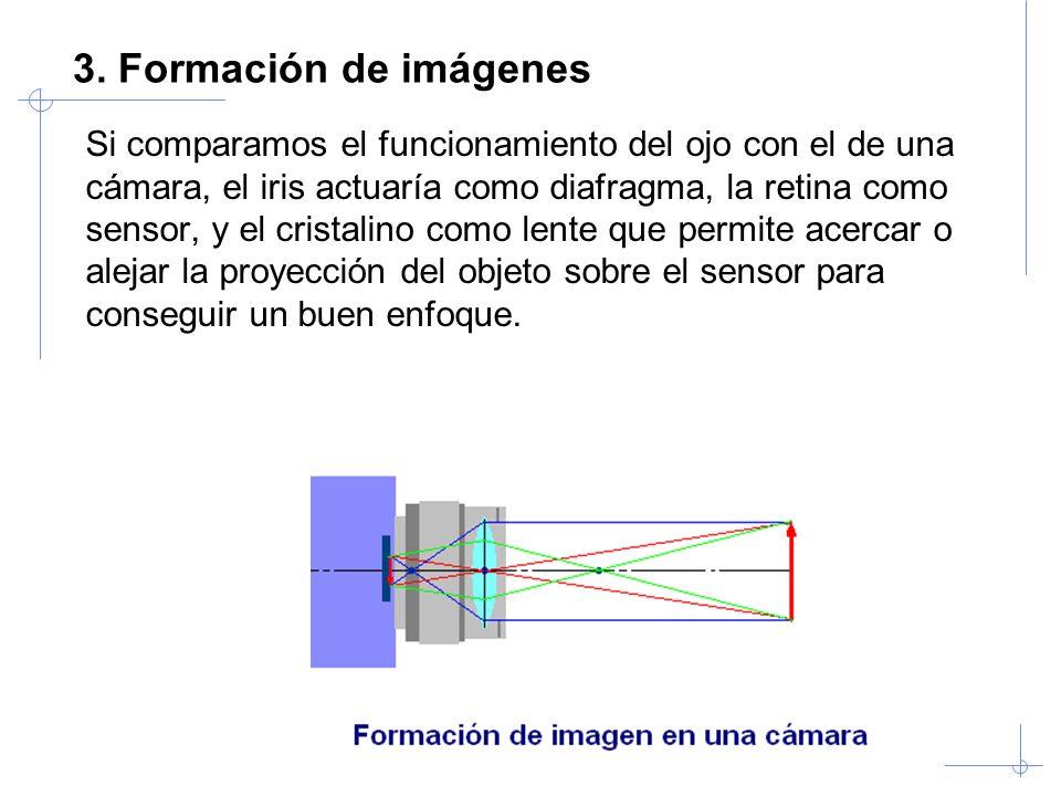 Visión Artificial Industrial. Univ. Valladolid 3. Formación de imágenes Si comparamos el funcionamiento del ojo con el de una cámara, el iris actuaría