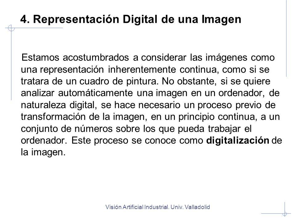 Visión Artificial Industrial. Univ. Valladolid 4. Representación Digital de una Imagen Estamos acostumbrados a considerar las imágenes como una repres