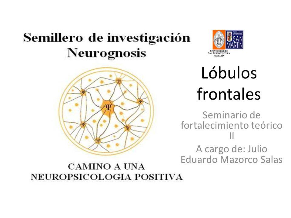 Lóbulos frontales Seminario de fortalecimiento teórico II A cargo de: Julio Eduardo Mazorco Salas
