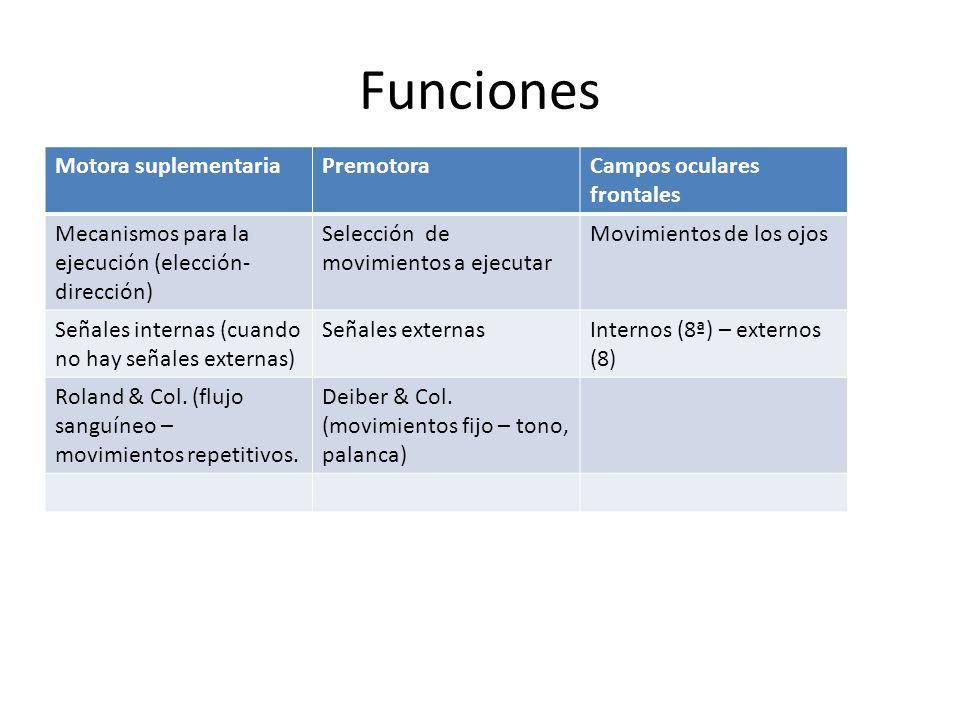 Funciones Motora suplementariaPremotoraCampos oculares frontales Mecanismos para la ejecución (elección- dirección) Selección de movimientos a ejecuta