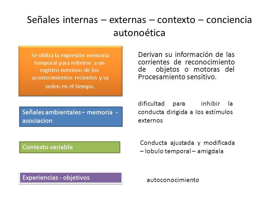 Señales internas – externas – contexto – conciencia autonoética Derivan su información de las corrientes de reconocimiento de objetos o motoras del Pr