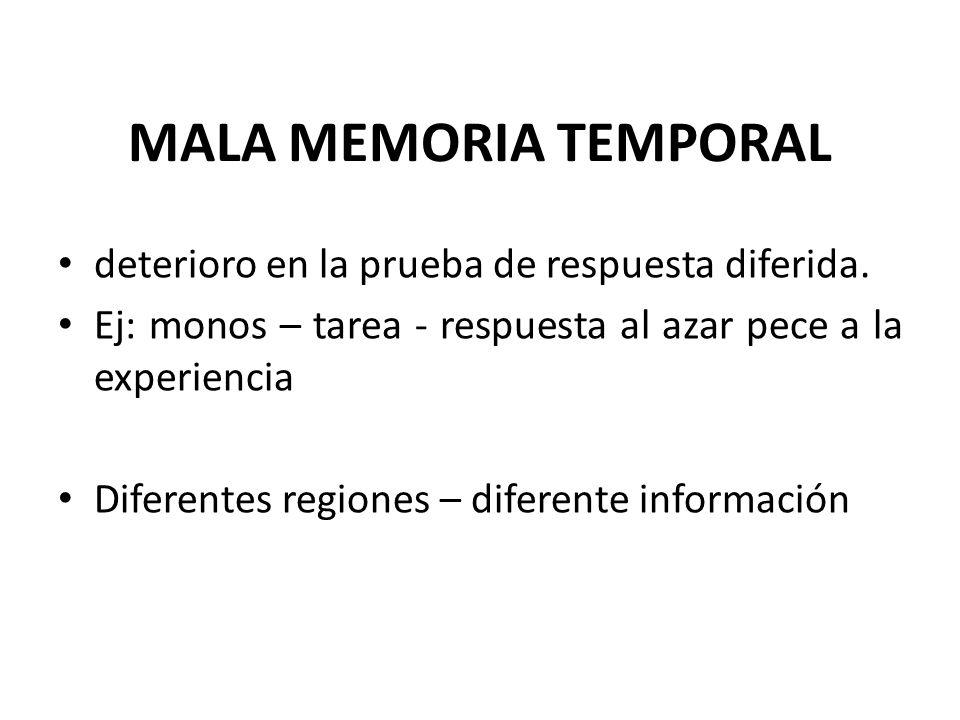 MALA MEMORIA TEMPORAL deterioro en la prueba de respuesta diferida. Ej: monos – tarea - respuesta al azar pece a la experiencia Diferentes regiones –