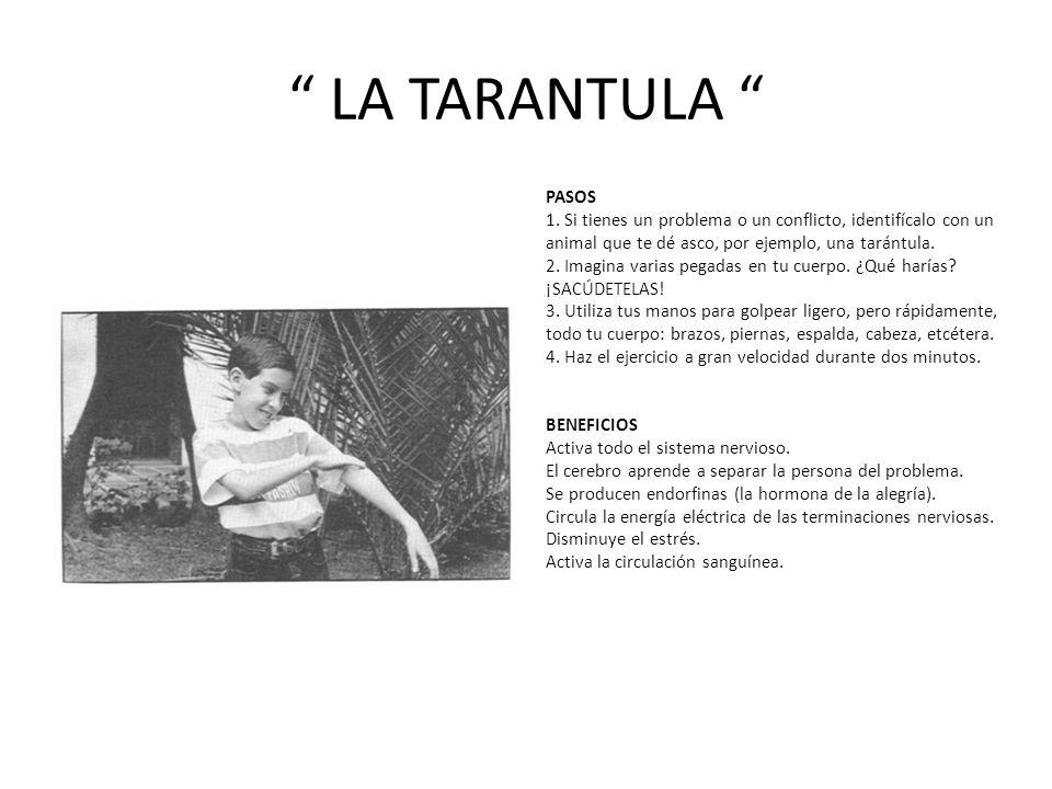 LA TARANTULA PASOS 1.
