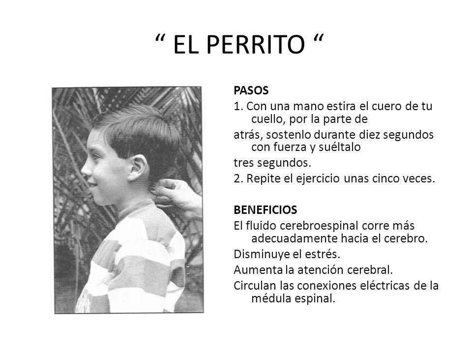 EL PERRITO PASOS 1.