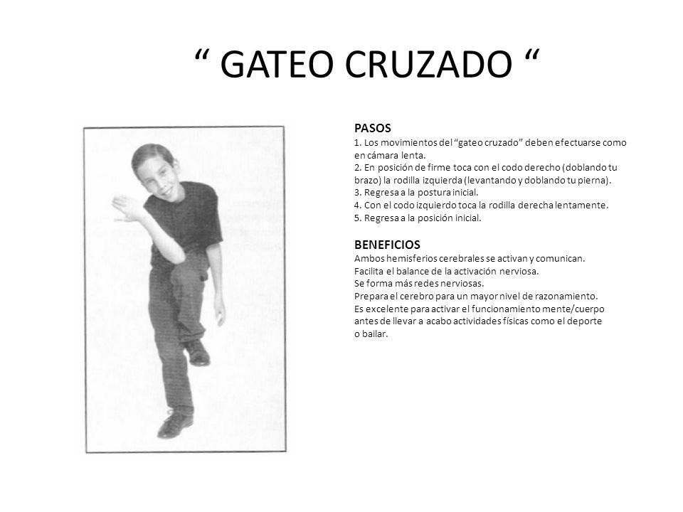 GATEO CRUZADO PASOS 1.Los movimientos del gateo cruzado deben efectuarse como en cámara lenta.
