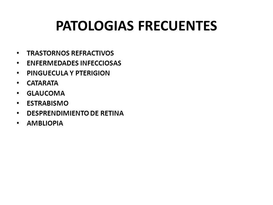 PATOLOGIAS FRECUENTES TRASTORNOS REFRACTIVOS ENFERMEDADES INFECCIOSAS PINGUECULA Y PTERIGION CATARATA GLAUCOMA ESTRABISMO DESPRENDIMIENTO DE RETINA AMBLIOPIA