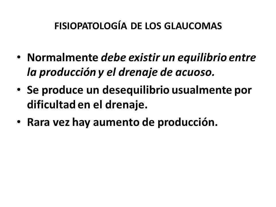 PRESIÓN INTRAOCULAR El ojo tiene una presión determinada por la produción y eliminación contínua de humor acuoso. Éste se produce en el cuerpo ciliar
