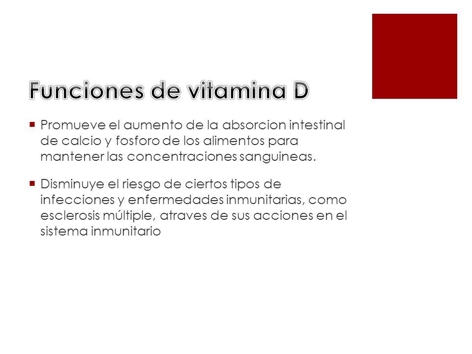 Promueve el aumento de la absorcion intestinal de calcio y fosforo de los alimentos para mantener las concentraciones sanguineas. Disminuye el riesgo