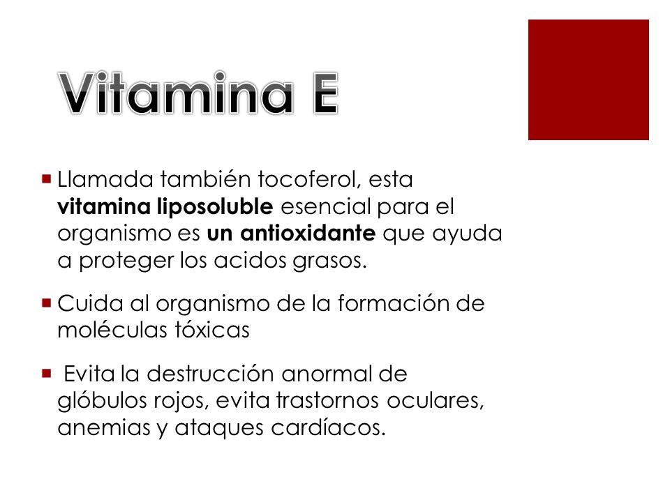 Llamada también tocoferol, esta vitamina liposoluble esencial para el organismo es un antioxidante que ayuda a proteger los acidos grasos. Cuida al or