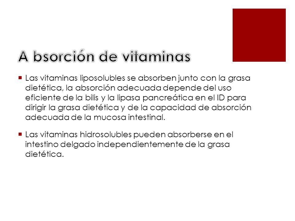 Las vitaminas liposolubles se absorben junto con la grasa dietética, la absorción adecuada depende del uso eficiente de la bilis y la lipasa pancreáti
