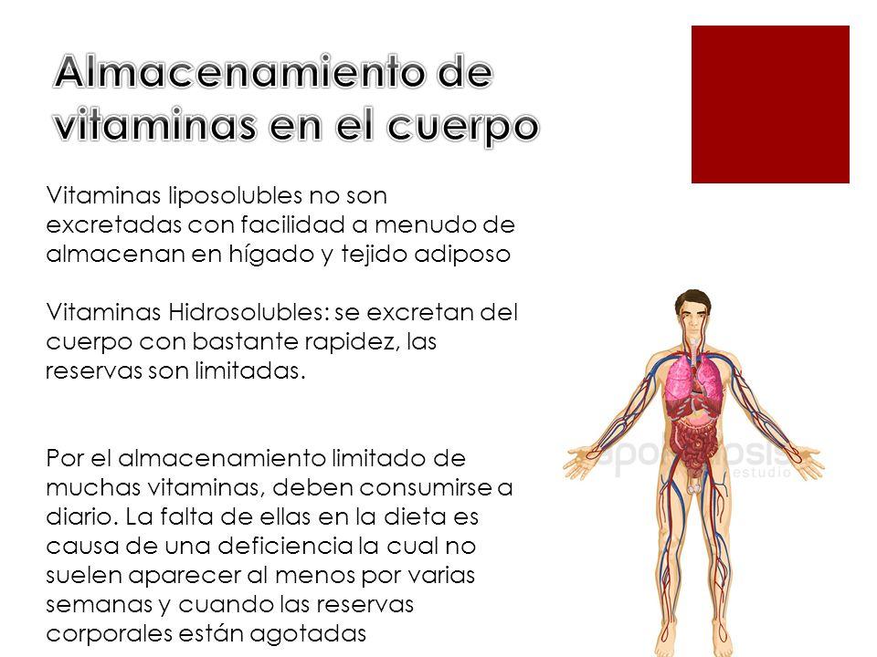 Vitaminas liposolubles no son excretadas con facilidad a menudo de almacenan en hígado y tejido adiposo Vitaminas Hidrosolubles: se excretan del cuerp