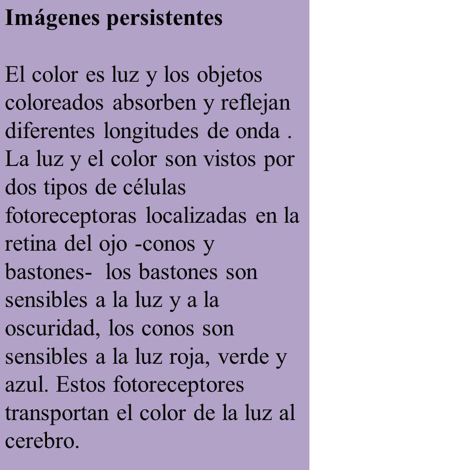 Imágenes persistentes El color es luz y los objetos coloreados absorben y reflejan diferentes longitudes de onda. La luz y el color son vistos por dos