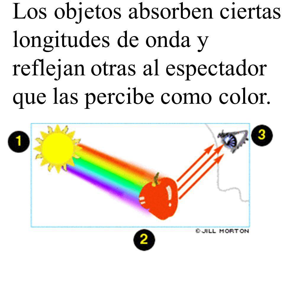 Los objetos absorben ciertas longitudes de onda y reflejan otras al espectador que las percibe como color.