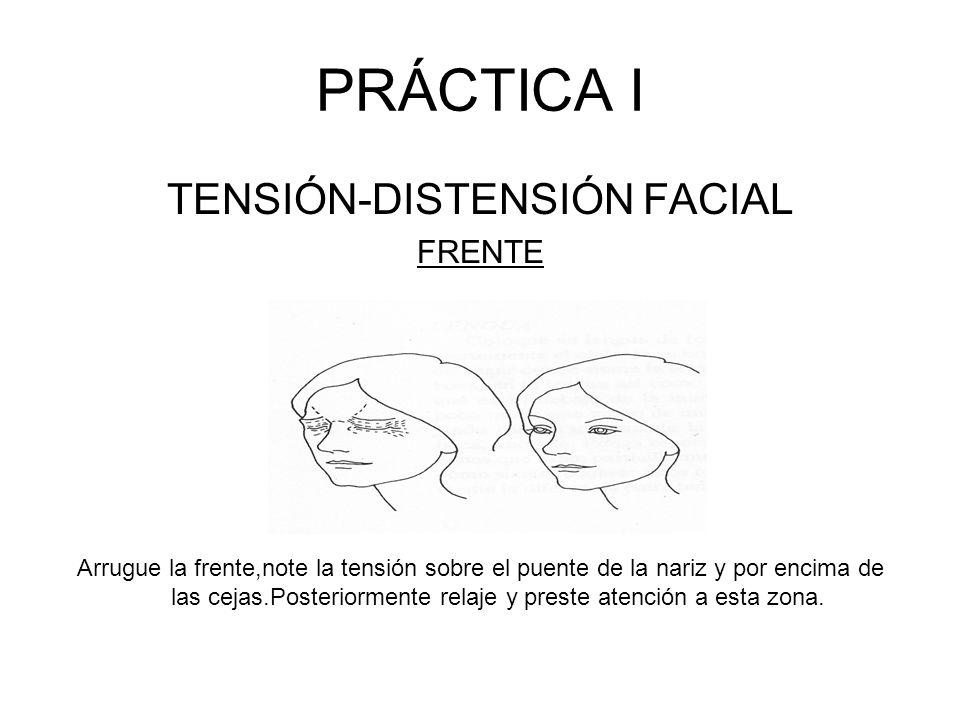 Imagen músculos de la cara
