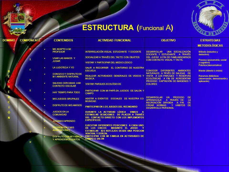 ESTRUCTURA ( Funcional A) DOMINIOCOMPONENTECONTENIDOSACTIVIDAD FUNCIONALOBJETIVO ESTRATEGIAS METODOLÓGICAS RECREACIÓN RECREACIÓN RECREACIONRECREACION
