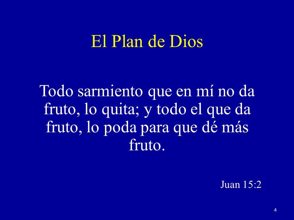 El Plan de Dios Todo sarmiento que en mí no da fruto, lo quita; y todo el que da fruto, lo poda para que dé más fruto. Juan 15:2 4