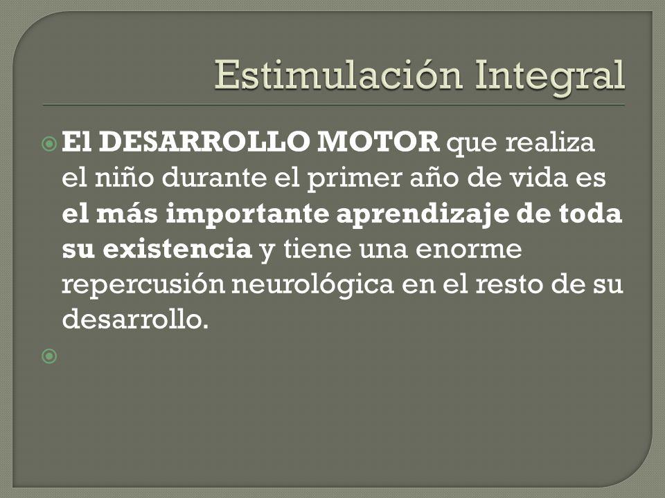 El DESARROLLO MOTOR que realiza el niño durante el primer año de vida es el más importante aprendizaje de toda su existencia y tiene una enorme repercusión neurológica en el resto de su desarrollo.