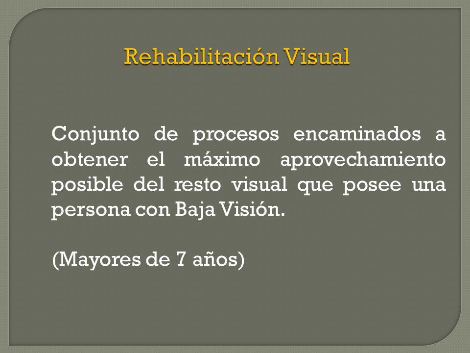 Conjunto de procesos encaminados a obtener el máximo aprovechamiento posible del resto visual que posee una persona con Baja Visión.