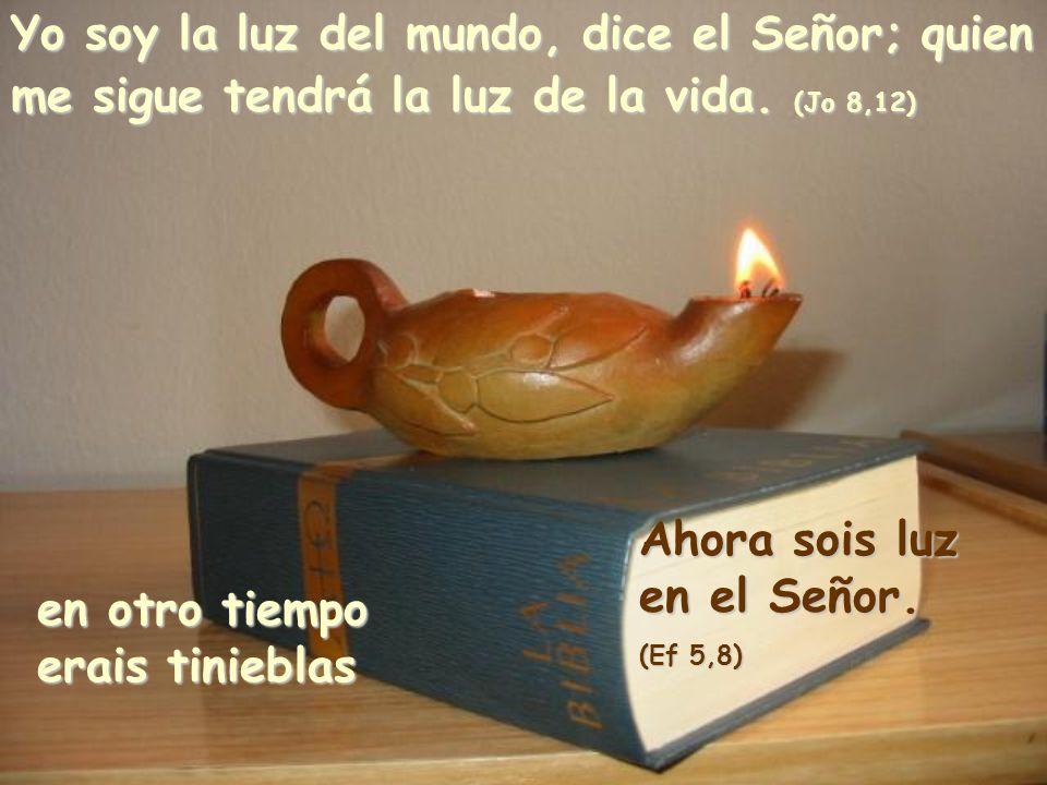 Yo soy la luz del mundo, dice el Señor; quien me sigue tendrá la luz de la vida.