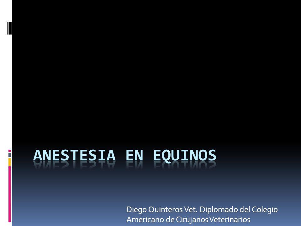 Diego Quinteros Vet. Diplomado del Colegio Americano de Cirujanos Veterinarios